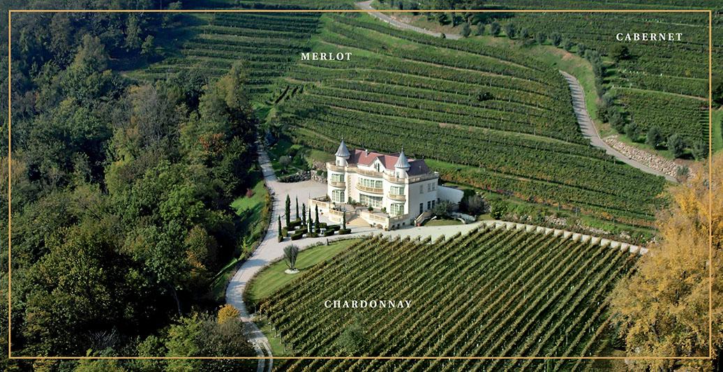 Immagine aerea vitigni Castello Luigi Svizzera